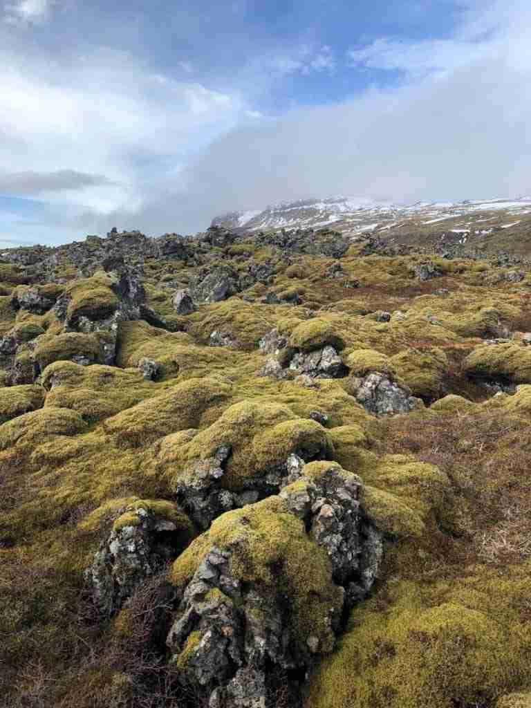 lava fields in snæfellsnes peninsula