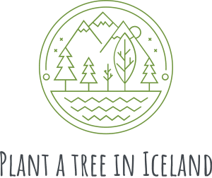 Plant A Tree In Iceland